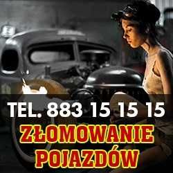 Kasacja zlom szrot Borek Wlkp skup aut