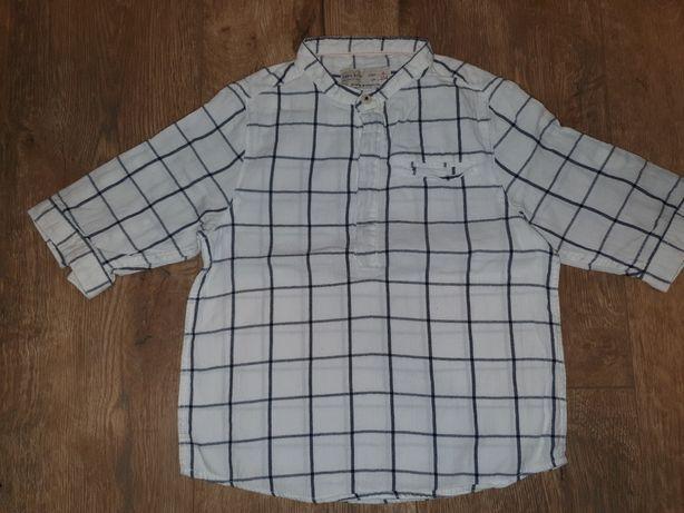 Koszula zara 104cm