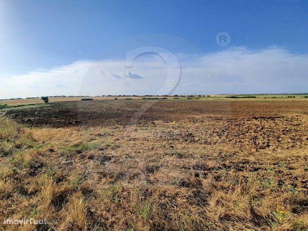 Terreno agrícola com 2,1 hectares  Alentejo