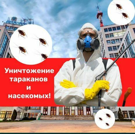 Уничтожение  тараканов, дезинфекция Днепр