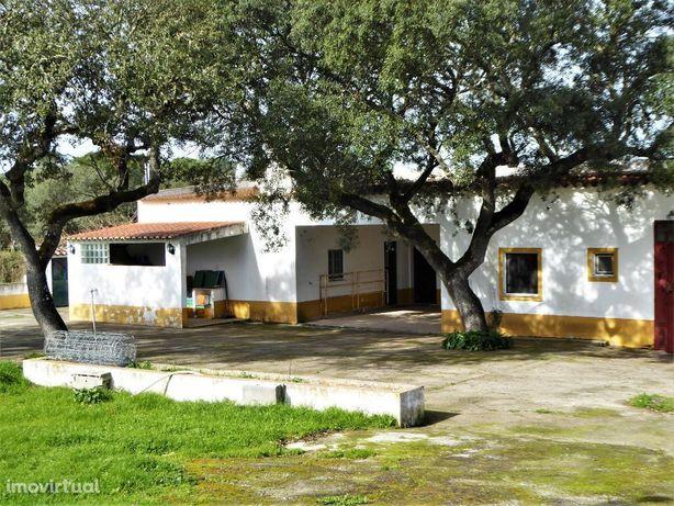 Duas Casas de Campo, 7 quartos, 18 000 m2 terreno. Évora, Montemor-...