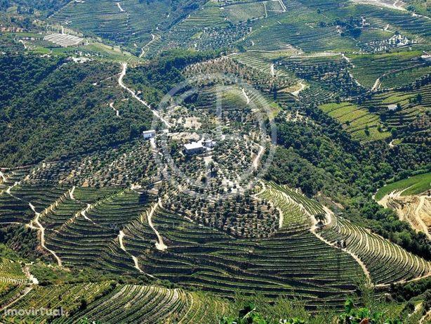 Quinta no Douro