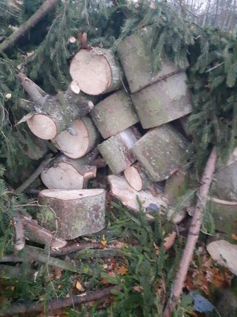 Drewno swierk grube