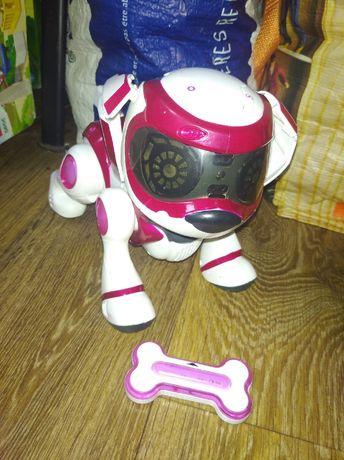 Робот собака teksa