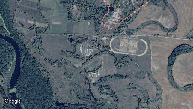 Продажа конезавода с земельным участком 150 га (госакт)
