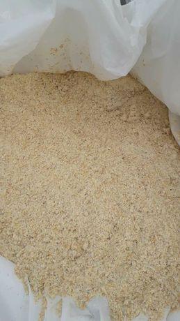 Kiszone ziarno kukurydzy mielone