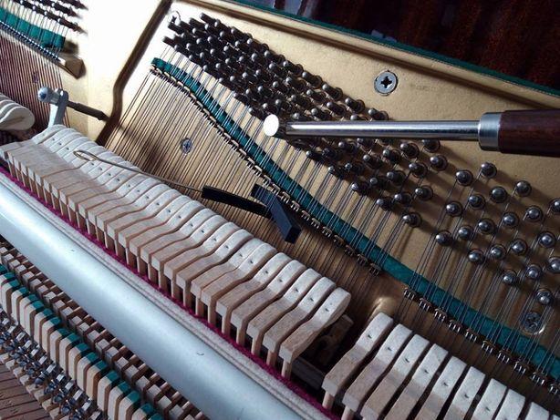 Afinador de Pianos do Sul