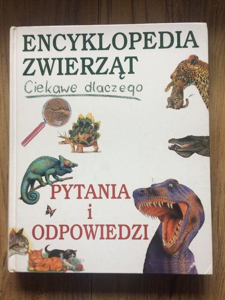 Encyklopedia zwierząt. Ciekawe dlaczego - pytania i odpowiedzi