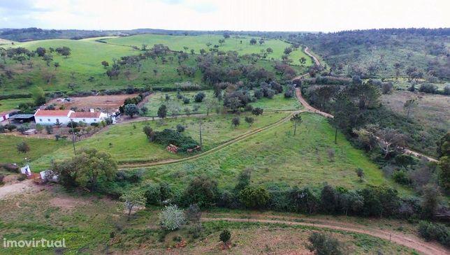 Terreno de 7000m2 com ruina a 17km de Porto Covo