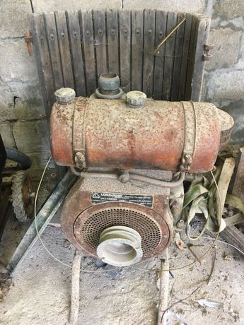 Motor rega Gasolina/petroleo lombardini