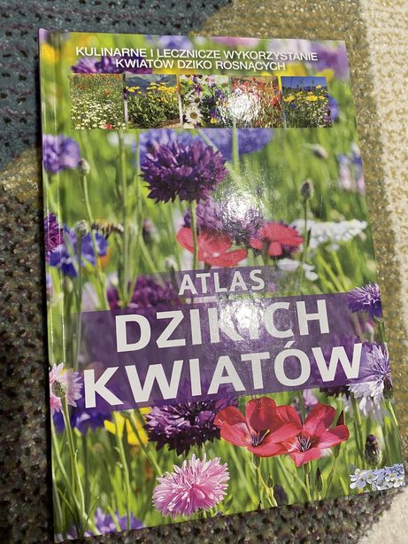 Atlas dzikich kwiatów ksiazka poradnik