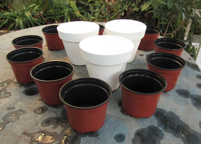 Conjunto 13 vasos de plástico (alturas 13 cm e 8 cm)