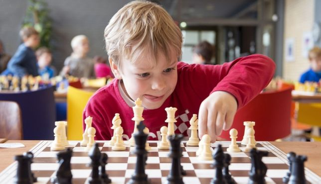 шахматы. Обучение детей. Скайп или индивидуально
