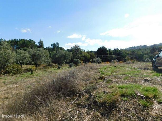 Terreno Agrícola Quintas da Torre Fundão