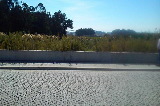Terreno Industrial Zona Industrial de Aveleda