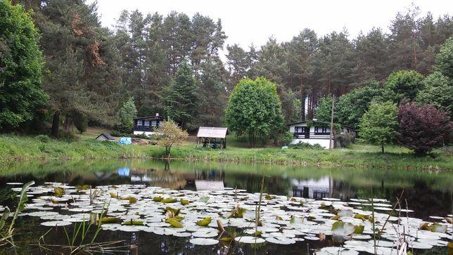 Domki letniskowe nad jeziorem Tyrsko, Olsztyn, Warmia i Mazury.