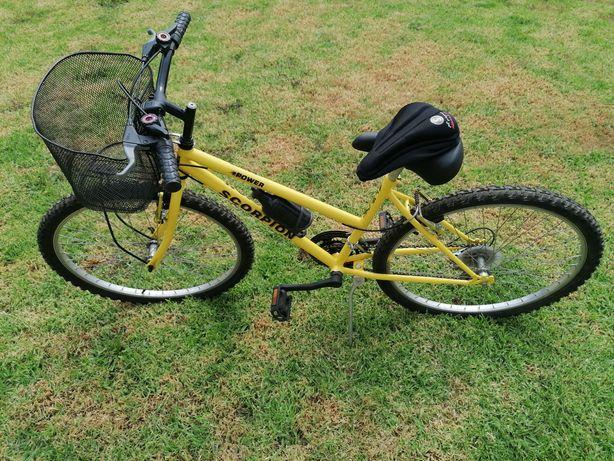 Bicicleta com cesto