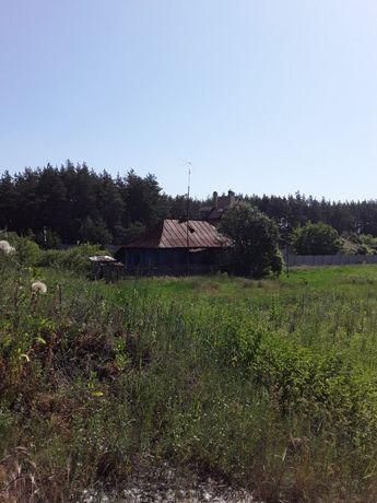 Продам участок 25 сот. возле леса с. Лизогубовка. D3