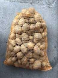 Ziemniaki młode Polskie colombo