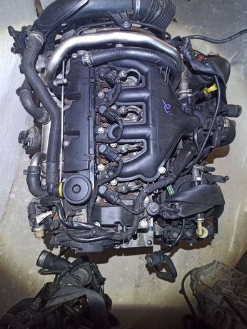 Двигатель 2.0 RHJ, RHR, RHK, RHH, DW10B, DW10BTED4, DW10UTED4, D4204T