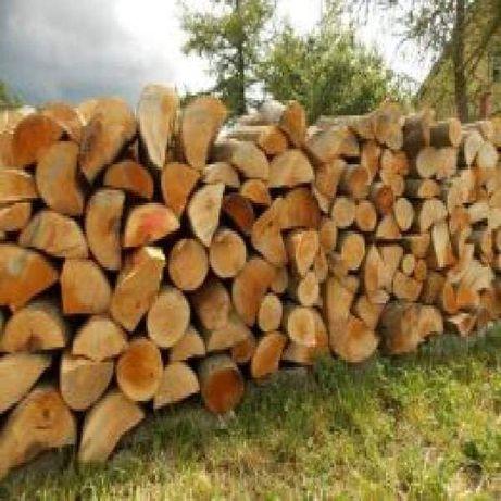Drewno drzewo kominkowe i opalowe bukowe