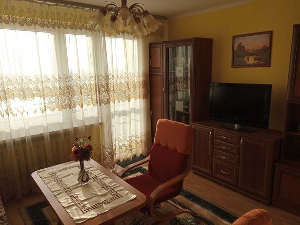 Wynajmę mieszkanie  2 pokoje w Busku Zdroju od 02.11.2021