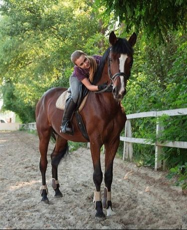 Конные прогулки, индивидуальные занятия верховой ездой, обучение.