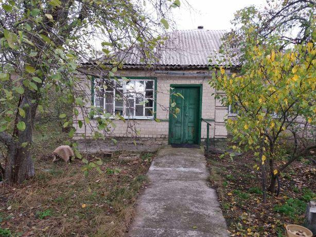 Продам дом-дачу (4 комнаты) в с.Могилев, ул.Тополиная, 8 (Селище)
