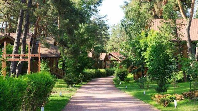 ID 349. Без комиссии. Дом в лесу, коттеджный городок Ольжичи Хотяновка