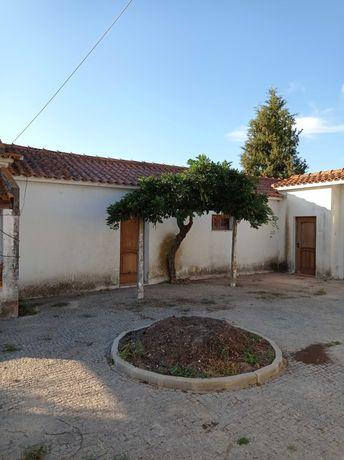 Casa T2 remodelada em quinta no Pinheiro Grande, Chamusca