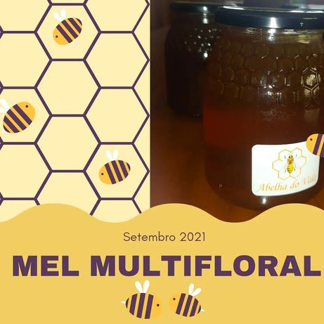 Mel Multifloral 1Kg