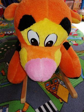 Bujak tygrys stan bardzo dobry