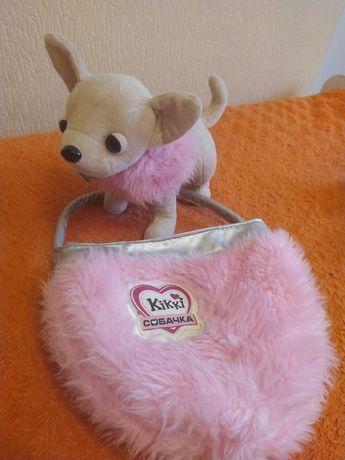 Мила собачка Кікі з сумочкою