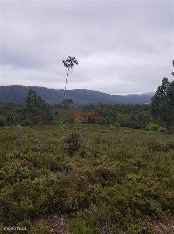 Terreno Rústico  Venda em Melres e Medas,Gondomar