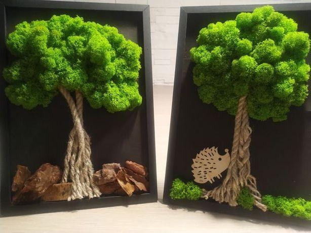 drzewko z mchu, mech chrobotek