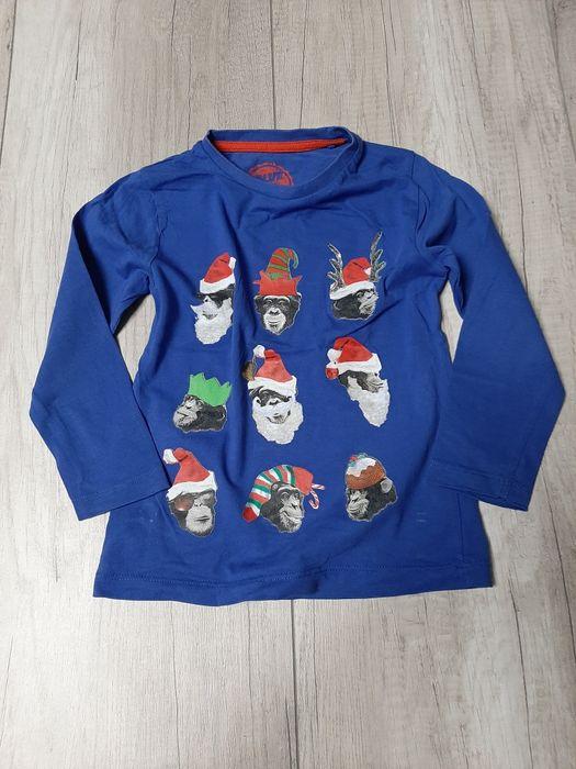 Niebieska bluzeczka z małpkami r 110 Reda - image 1