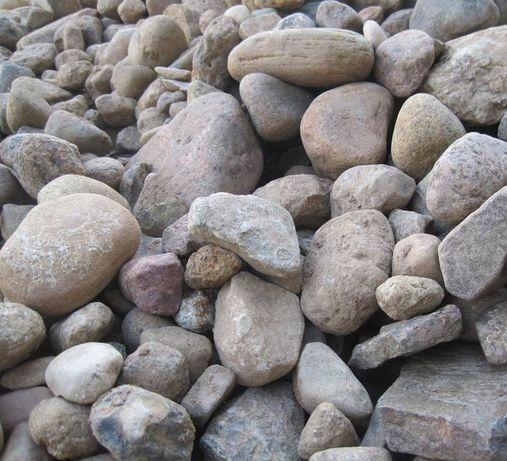 Oddam kamienie polne za darmo