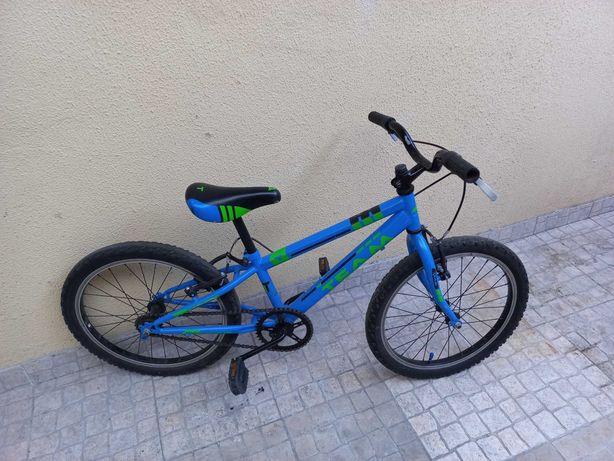 Bicicleta Infantil Roda 20