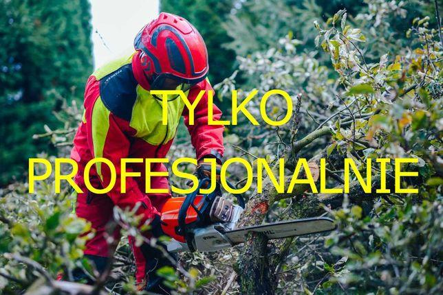 Wycinka Drzew, Pielęgnacja Ogrodów, Czyszczenie działek, Skup Lasów