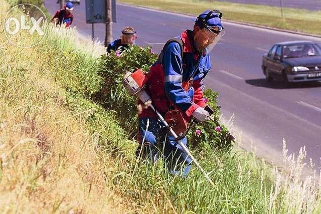 koszenie trawników,nieużytków , wycinka drzew, karczowanie,pielęgnacja