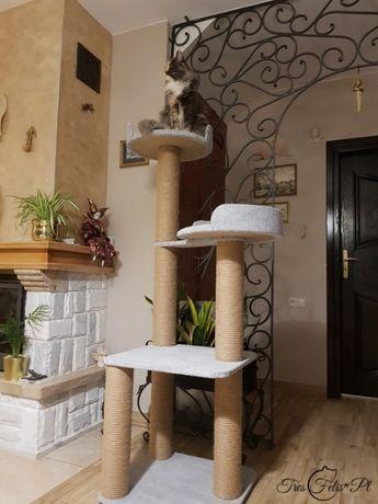 NR 2 Drapak dla kota dużych kotów rozety 45cm lub 50cm