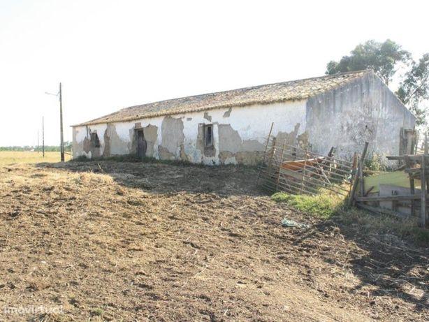 Quinta com Ruina na Costa Vicentina