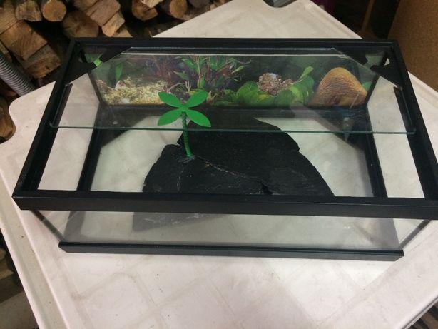 tartarugueira vidro