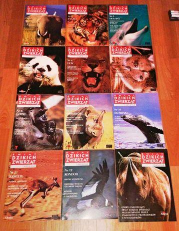 Świat Dzikich Zwierząt - zeszyty edukacyjne