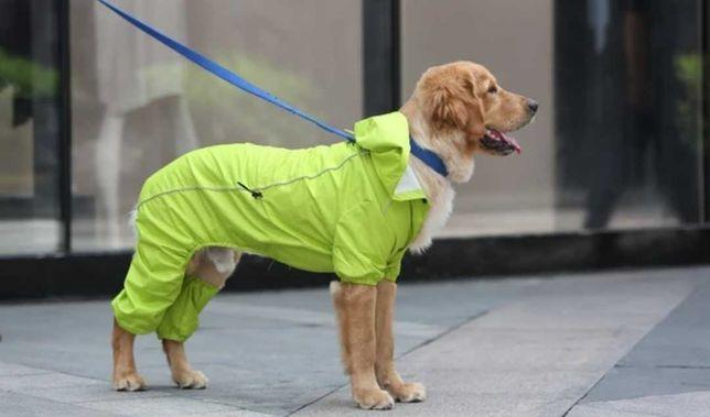 Capa de chuva para cão grande