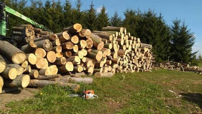 Drewno opałowe i kominkowe, buk, dąb, mokre i sezonowane.