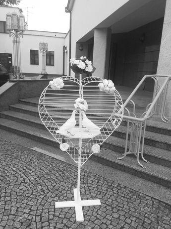 Białe gołębie na ślub. Grudziądz