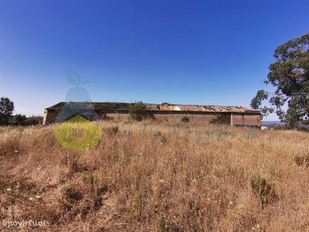 Herdade com 40 hectares em Pereiras-Gare