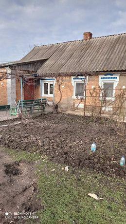 Дом село Шолохово