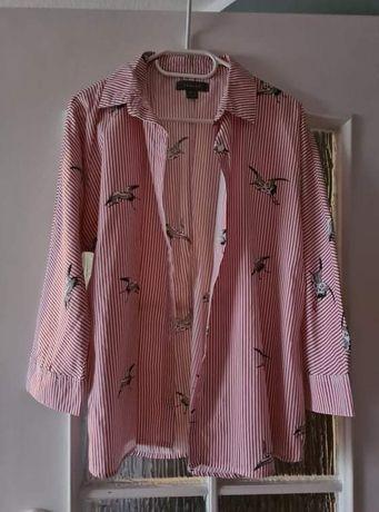 Koszula w paski w ptaki
